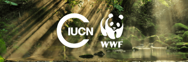 communication partner of wwf